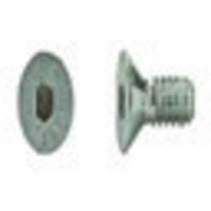 Flat Socket Cap Screw